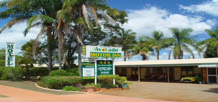 Avocado Motor Inn - Whitsundays Tourism