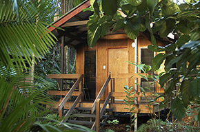 Cape Trib Beach House - Whitsundays Tourism