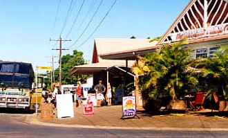 Mission Beach Rainforest Motel - Whitsundays Tourism