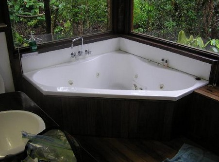 The Canopy Rainforest Tree Houses and Wildlife Sanctuary - Whitsundays Tourism