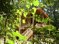 Rivers Edge Rainforest Retreat - Whitsundays Tourism