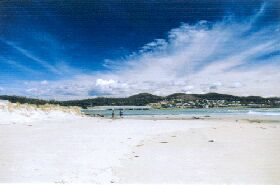 Carmen's Inn - Whitsundays Tourism