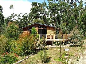 Southern Forest Accommodation - Whitsundays Tourism