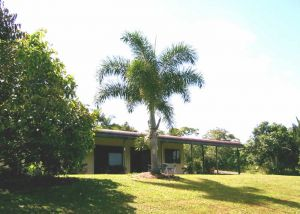 Daintree Mountain View Retreat and Vanilla Beans - Whitsundays Tourism