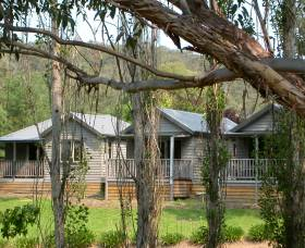 The Homestead Cabins Brogo - Whitsundays Tourism