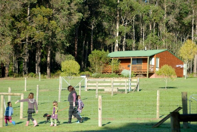 Diamond Forest Farm Stay - Whitsundays Tourism