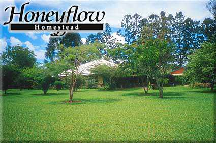 Honeyflow Homestead - Whitsundays Tourism