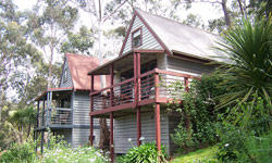 Great Ocean Road Cottages - Whitsundays Tourism