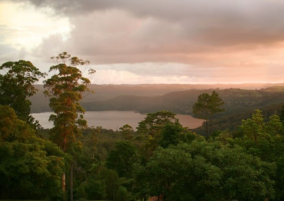 Montville Misty View Cabins - Whitsundays Tourism