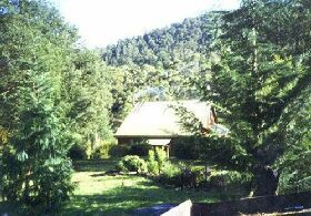 Horse Haven Farmstay - Whitsundays Tourism