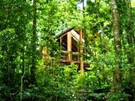 Fur'N'Feathers Rainforest Tree Houses - Whitsundays Tourism