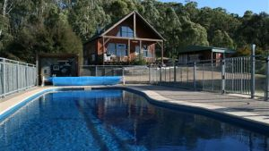 Karoonda Olive Grove Retreat at Mt Buffalo Olives - Whitsundays Tourism