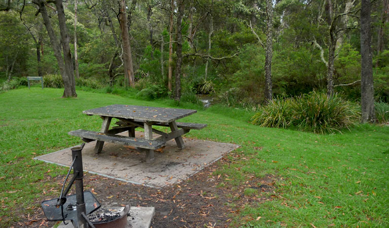 Chaelundi campground - Whitsundays Tourism