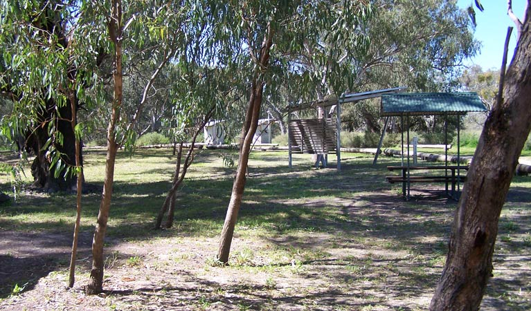 Coach and Horses campground - Whitsundays Tourism