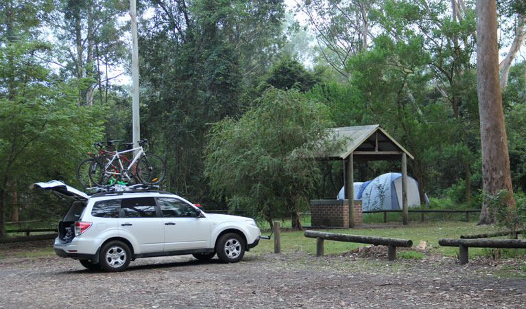 Mill Creek campground - Whitsundays Tourism