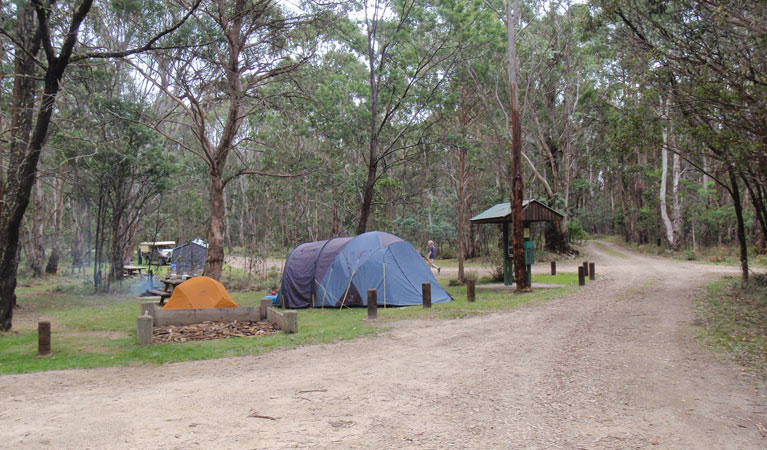 Native Dog campground - Whitsundays Tourism