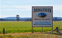 The Ardlethan