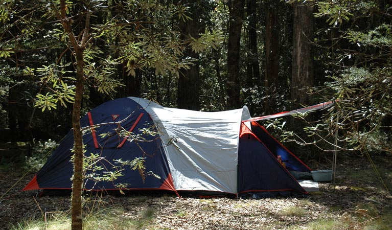 Thungutti campground - Whitsundays Tourism