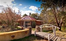 Starline Alpaca Farm Stay - Whitsundays Tourism