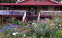 Rose Patch Bed and Breakfast - Whitsundays Tourism
