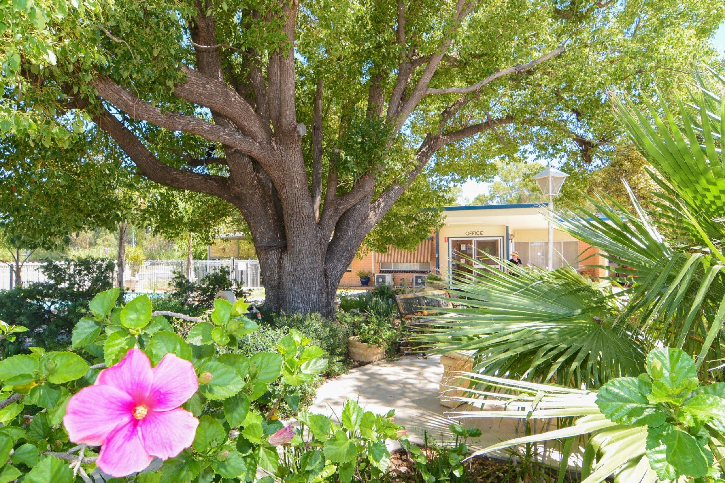 Balranald Sturt Motel - Whitsundays Tourism