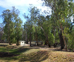 Balranald Caravan Park - Whitsundays Tourism