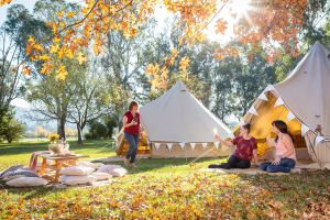 Valley View Glamping - Whitsundays Tourism