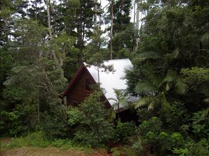 Turkeys Nest Rainforest Cottages Mt Glorious - Whitsundays Tourism