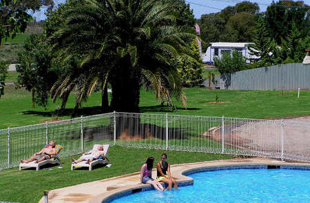 Swan Hill Holiday Park - Whitsundays Tourism