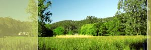 Waterholes Guest House - Whitsundays Tourism