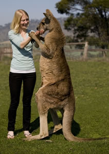 Zoo Doo Wildlife Park