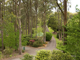 Mount Lofty Botanic Garden - Whitsundays Tourism