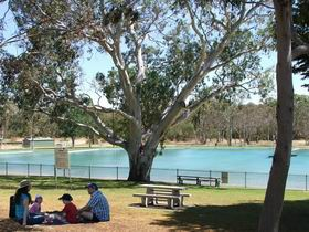 Naracoorte Nature Park and Swimming Lake - Whitsundays Tourism