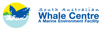 South Australian Whale Centre - Whitsundays Tourism