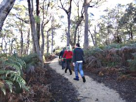 Bridport Walking Track - Whitsundays Tourism