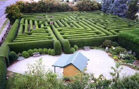 Westbury Maze and Tea Room - Whitsundays Tourism