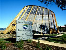 Forest EcoCentre - Whitsundays Tourism