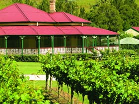 OReillys Canungra Valley Vineyards - Whitsundays Tourism