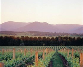 Domaine Chandon - Whitsundays Tourism