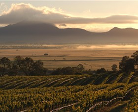 Montara Wines - Whitsundays Tourism