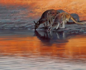 Steve Morvell Wildlife Art - Whitsundays Tourism