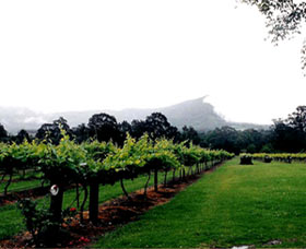 Cambewarra Estate Wines - Whitsundays Tourism