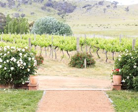 Brindabella Hills Winery - Whitsundays Tourism