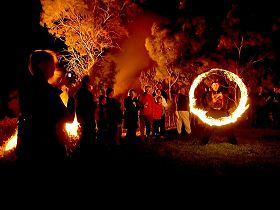 Coal Valley Vineyard