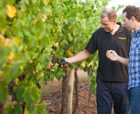 Fratin Brothers Vineyard - Whitsundays Tourism