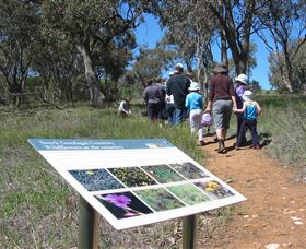 South Gundagai Woodlands Walk - Whitsundays Tourism