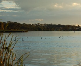 Lake Inverell Reserve - Whitsundays Tourism
