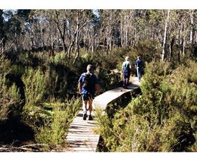 Hume and Hovell Walking Track - Henry Angel Trackhead - Whitsundays Tourism