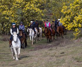 Burnelee Excursions on Horseback - Whitsundays Tourism