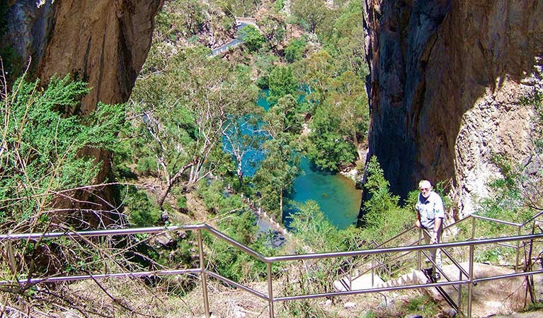 Carlotta Arch walking track - Whitsundays Tourism